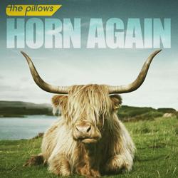 the pillows - horn again